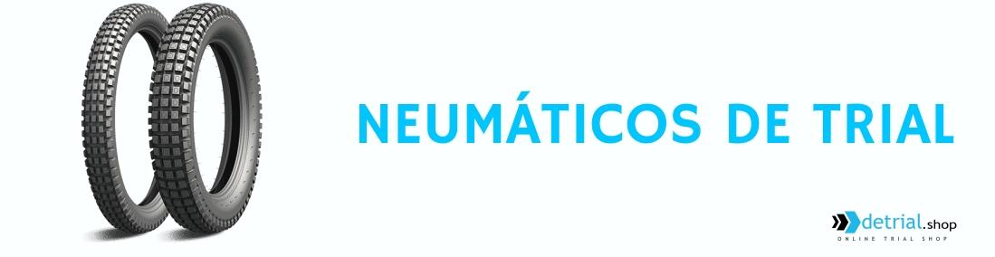 Juego Neumaticos Trial